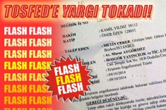 141023-tosfed-yargi